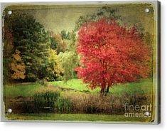 Antique Autumn Acrylic Print