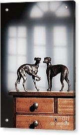 Antique Bronze Greyhound Dogs Acrylic Print