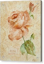 Antique Rose Acrylic Print by Debbie Lewis