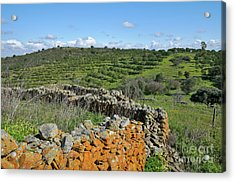 Antique Stone Wall Of An Old Farm Acrylic Print by Angelo DeVal