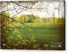 Antiqued Grunge Landscape Acrylic Print by Sandra Cunningham