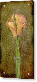 Antiqued Lilies Acrylic Print