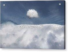 Apex Acrylic Print by John Poon