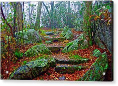 Appalachain Trail In The Clouds Acrylic Print