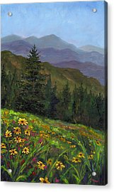Appalachian Color Acrylic Print by Jeff Pittman