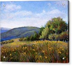 Appalachian Field Acrylic Print