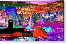 Appalachian Foliage Wonders Acrylic Print