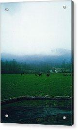 Appalachian Pasture Acrylic Print by Utopia Concepts