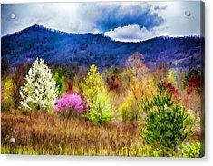 Appalachian Spring In The Holler Acrylic Print