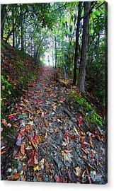 Appalachian Trail Hike Acrylic Print