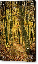 Acrylic Print featuring the photograph Appalachian Trail In The Blue Ridge In Autumn by Dan Carmichael