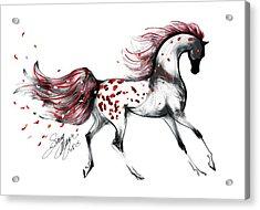 Appaloosa Rose Petals Horse Acrylic Print