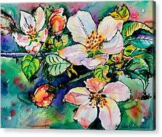Apple Blossom Acrylic Print by Yelena Tylkina