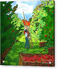Apple Harvest Acrylic Print by Linda Marcille