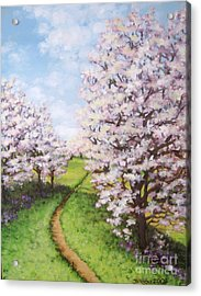 Apple Trees Along The Path Acrylic Print