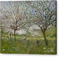 Apple Trees In Flower Acrylic Print by Ernest Quost