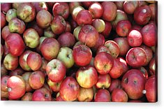 Apples In The Fall Acrylic Print by Andrea Kilbane