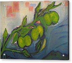 Apples Acrylic Print by Maria  Kolucheva