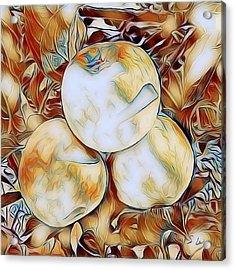 Apples 01 ...06.33 Avant Garde Graphics Acrylic Print