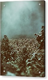 Approaching Storm Acrylic Print by Jason Coward