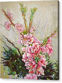 Apricot Energy Acrylic Print by Carole Haslock
