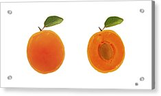 Apricots Acrylic Print by Lisa Weedn