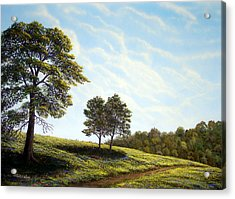 April Afternoon Acrylic Print by Frank Wilson