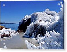 April Ice Storm Treasures Acrylic Print by Sandra Updyke