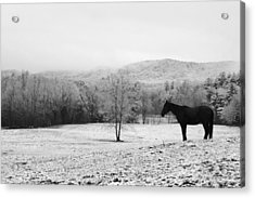 April Snow Acrylic Print by Robert Clayton