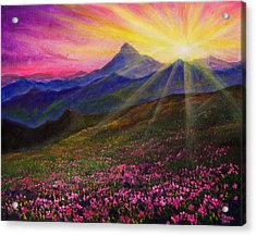April Sunset Acrylic Print by C Steele
