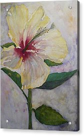 April's Flower Acrylic Print by Stella Schaefer