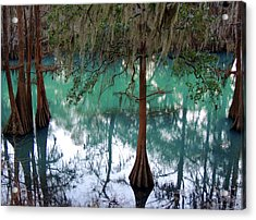Aqua Beauty Acrylic Print by Kim Pate