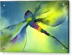 Aqua Dragonfly Acrylic Print by Gladys Folkers