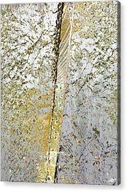 Aqua Metallic Series Gold Rush Acrylic Print by Tony Rubino