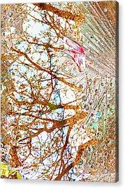 Aqua Metallic Series Burn Acrylic Print by Tony Rubino