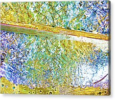 Aqua Metallic Series Cool Acrylic Print by Tony Rubino