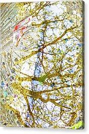 Aqua Metallic Series Crisp Acrylic Print by Tony Rubino