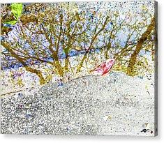 Aqua Metallic Series Forest Acrylic Print by Tony Rubino