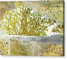 Aqua Metallic Series Gilded Acrylic Print by Tony Rubino