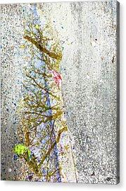 Aqua Metallic Series Spring Acrylic Print