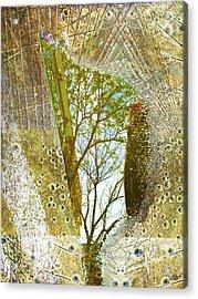 Aqua Metallic Series Woods Acrylic Print by Tony Rubino