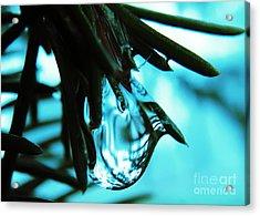 Aqua Acrylic Print by Misha Bean