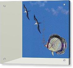 Aquarium Acrylic Print by Tony Rodriguez