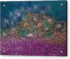 Aquarius Painting Acrylic Print by Don  Wright
