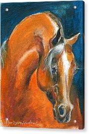 Arabian 1 Acrylic Print by Mary Armstrong