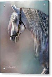 Acrylic Print featuring the digital art Arabian Grey by Kari Nanstad