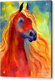 Arabian Horse 5 Painting Acrylic Print by Svetlana Novikova