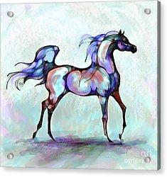 Arabian Horse Overlook Acrylic Print
