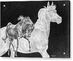Arabian Horse Spirit Print Acrylic Print