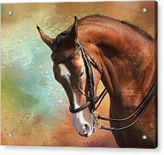 Acrylic Print featuring the photograph Arabian Horse by Theresa Tahara